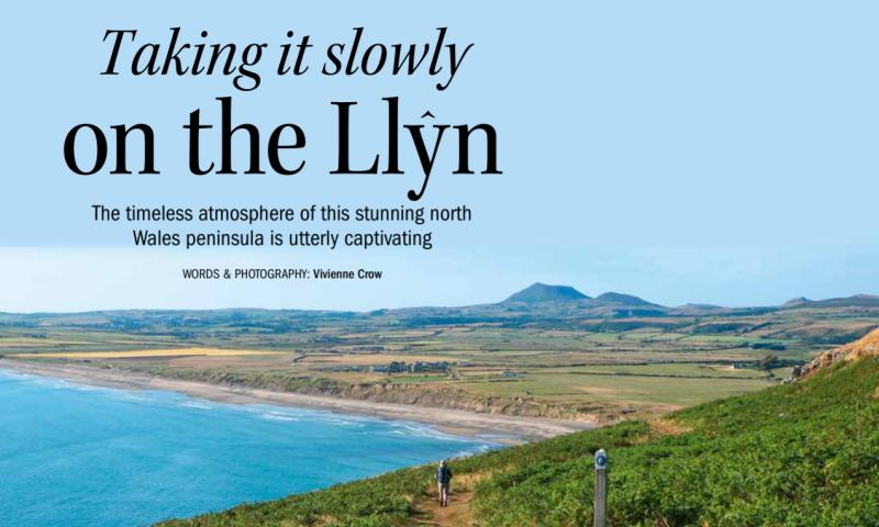 Magazine features writer Vivienne Crow