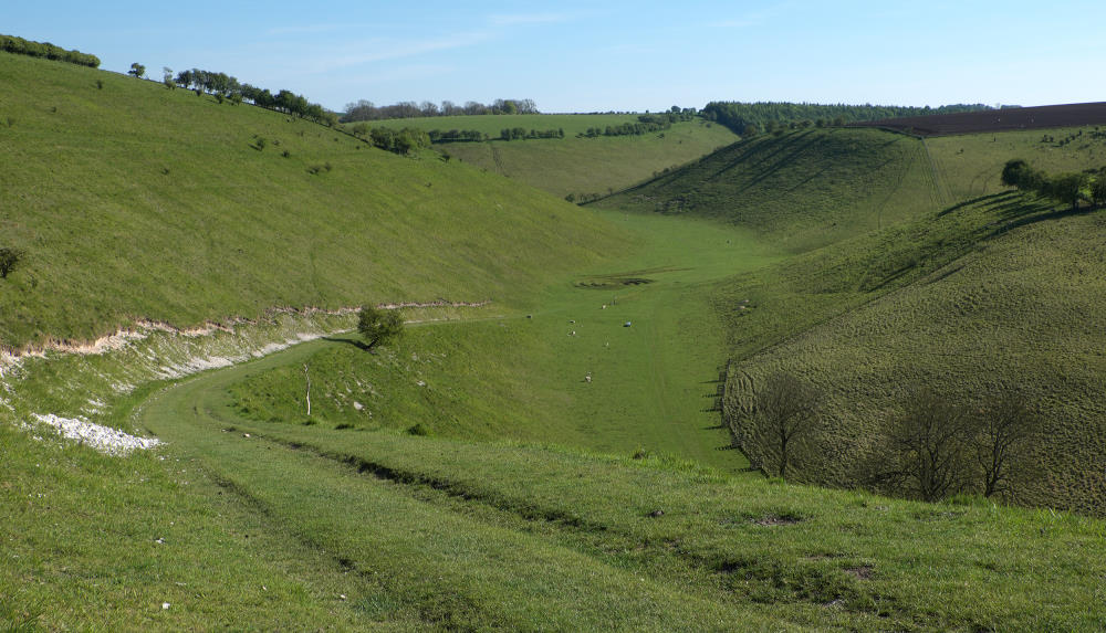 Walking In Brownmoor Dale - a blog by Vivienne Crow