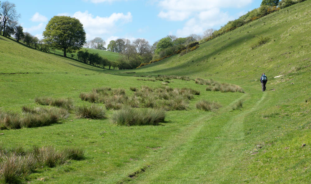 Vivienne Crow Blog - Walking In Brownmoor Dale